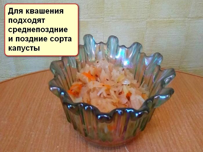 Можно ли квасить подмороженную капусту